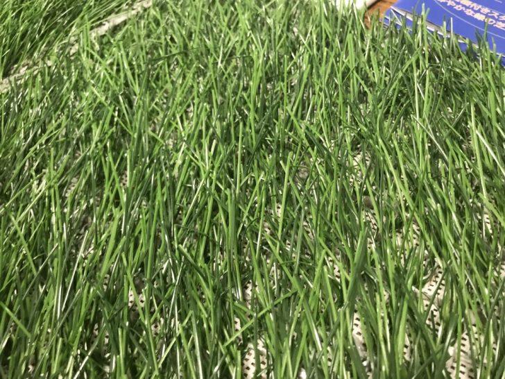 ハイブリッド芝の下地