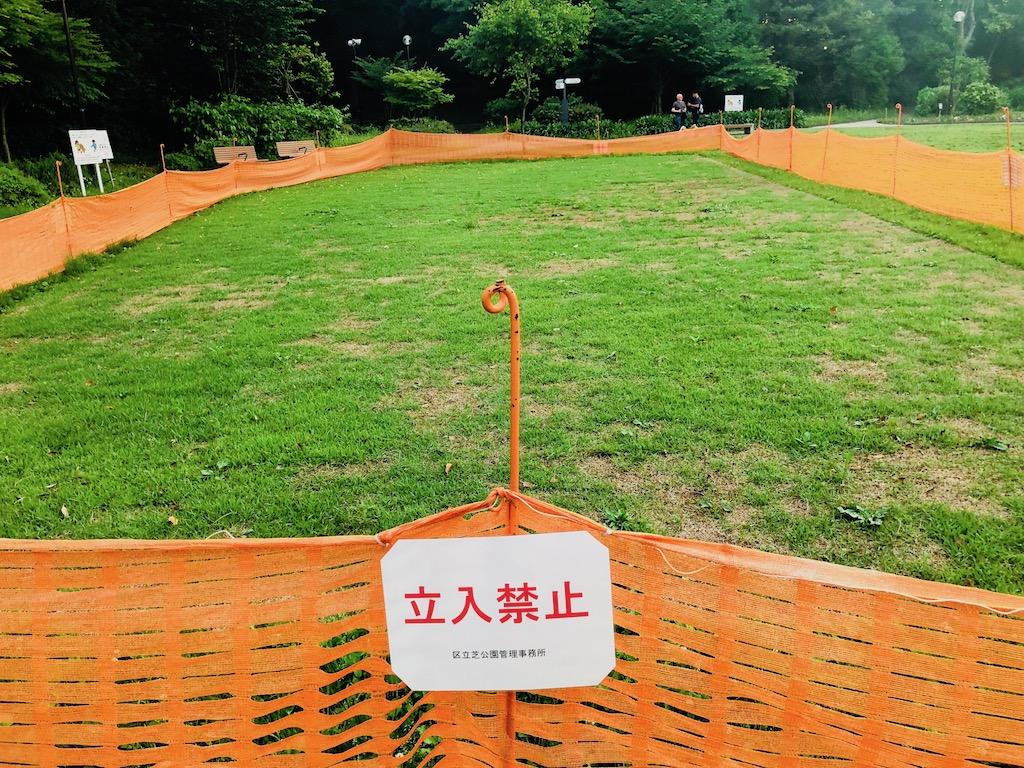芝公園で芝生の養生