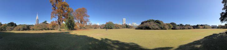 新宿御苑中央の芝生広場