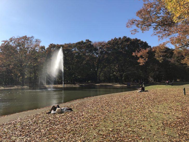 代々木公園の噴水付近