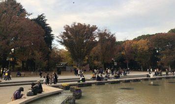 上野公園の噴水広場