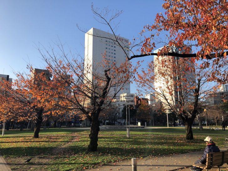 錦糸公園の芝生広場