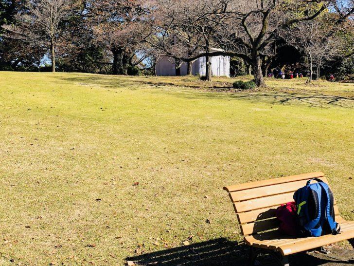 新宿御苑の芝生とベンチ