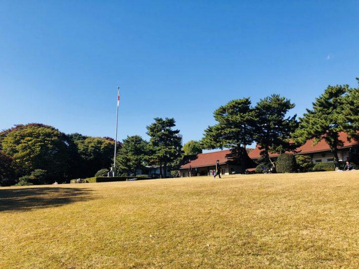 明治神宮の芝生広場