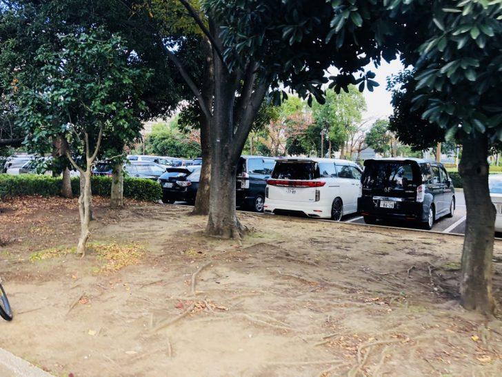 木場公園の駐車場