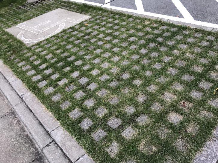 駐車場の芝生化事例