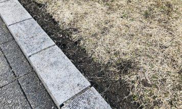芝生の根切り