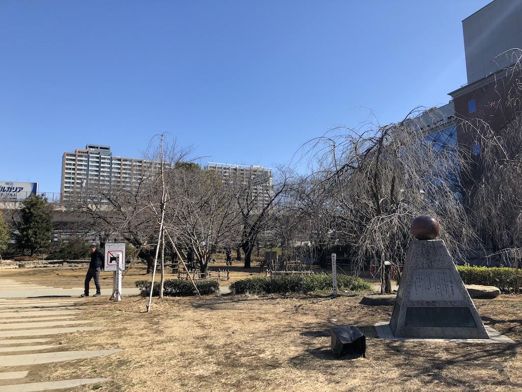 浜町公園の芝生広場