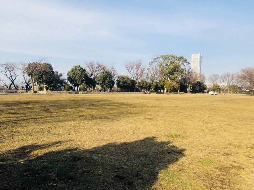 野毛山公園の芝生広場