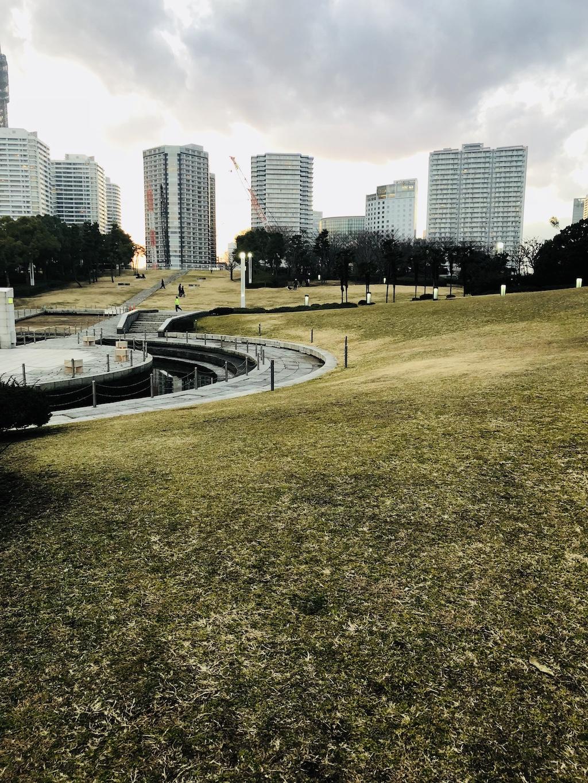 臨港パーク・潮入りの池周辺の芝生
