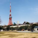 芝公園と東京タワー