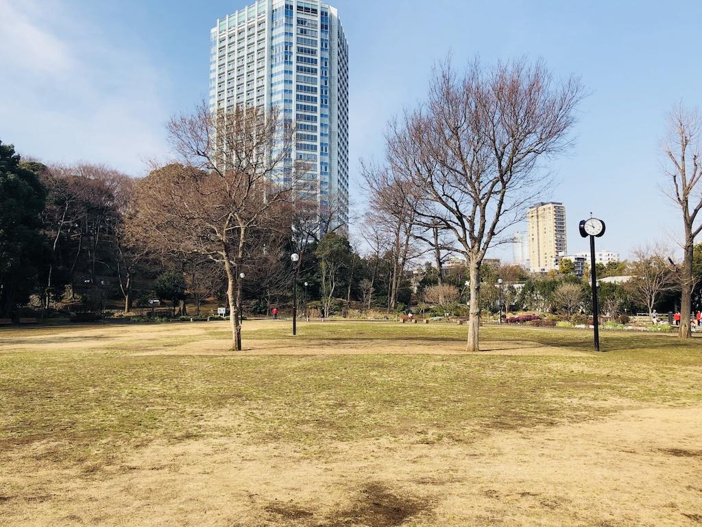 都立芝公園の芝生広場