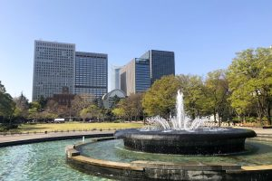 日比谷公園の芝生広場