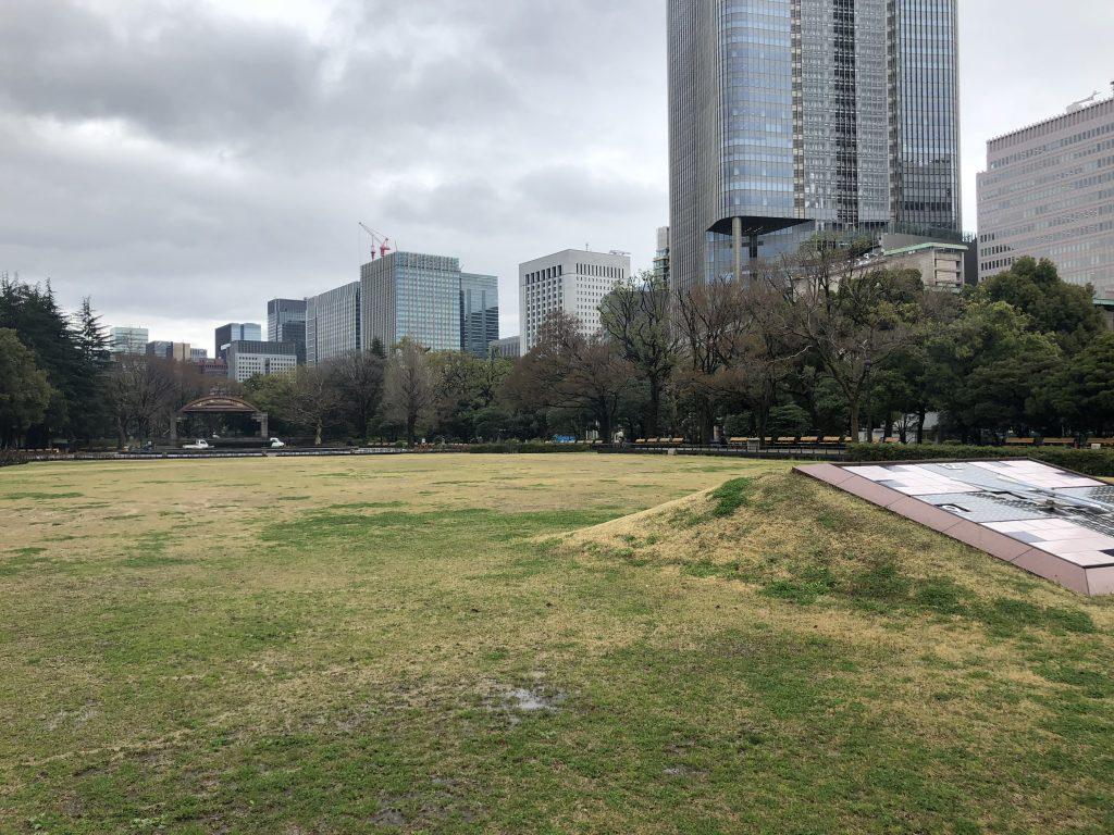 日比谷公園の芝生とミッドタウン日比谷