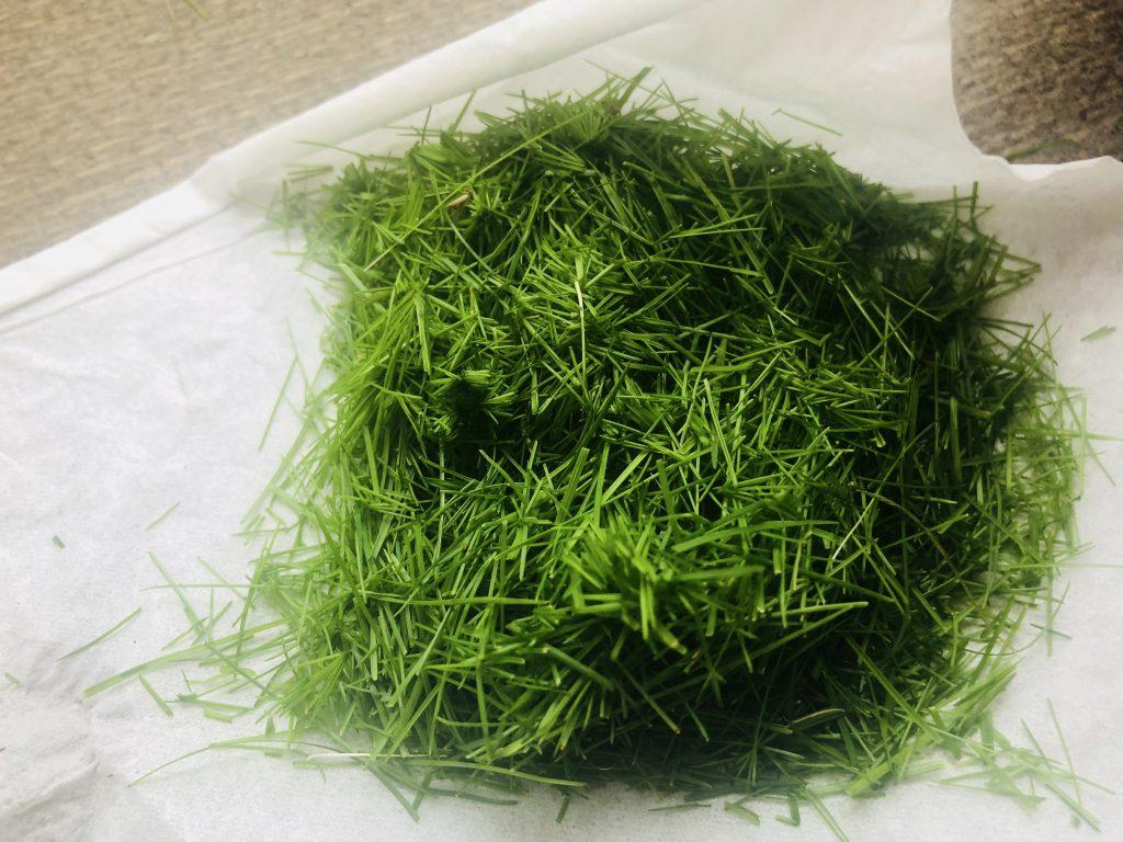 0406三種混合西洋芝の刈りカス